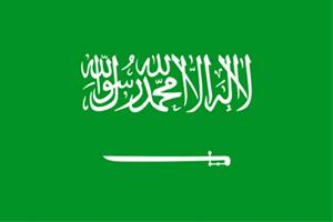 沙特.jpg